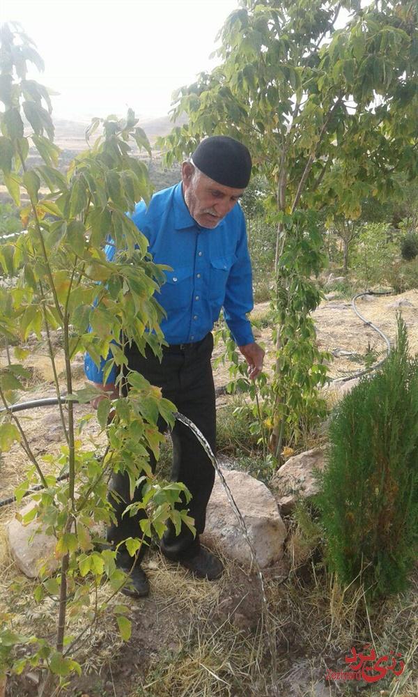 آقای حسن درگاهی نیا در حال آبیاری درختان سیمزار (قبرستان رزجرد)