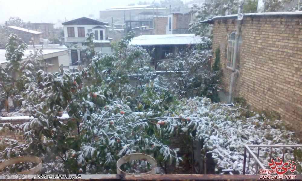 اولین برف سال 94 - عکس 6
