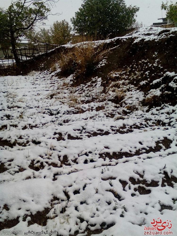 اولین برف سال 94 - عکس 9